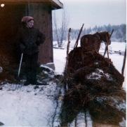 Maija Anttila ja Tahti sonnanajossa