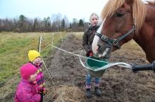 Kira, 3, ja Nelli, 4, ihmettelevät, miten Johanna-äidin tarjoamat kaurat saavat Nurmio-hepan turvan vaahtoamaan.
