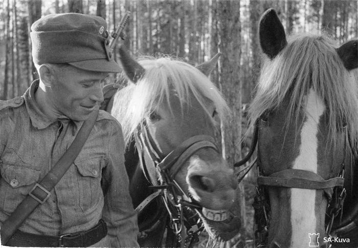 Tykkimies ja h�n hevosensa.